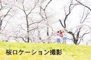 2021年桜ロケーション